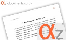 P-20 Information Security Policy